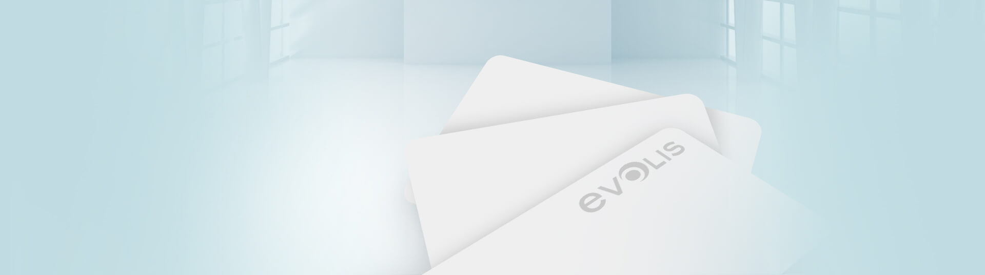 Evolis Blank Cards